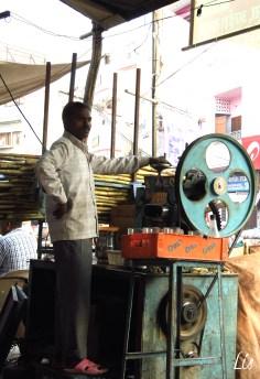 Indian jobs, sugar cane
