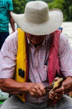 Corronchos, peces, Hombre, Pescadores, Río la vieja, Colombia (4)