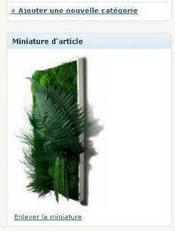 Miniature d'article