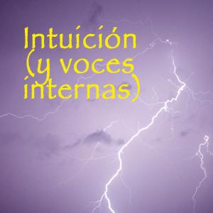 Taller sobre Intuición