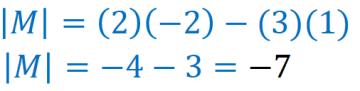 determinante de la matriz de coeficientes