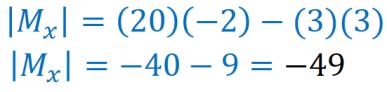 determinante de la matriz X