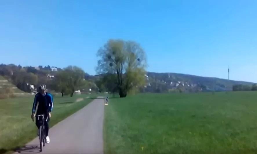 Unterwegs auf dem Elbradweg in Dresden
