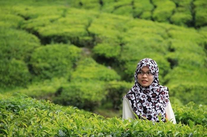 El Hijab o Velo de la mujer musulmana