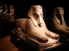 Museo egizio-sfinge