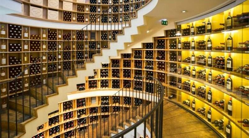 Aprendiendo un poco sobre el vino