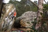 Fontainebleau Duroxmanie