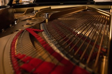 Inside of the piano photographed by David Brant
