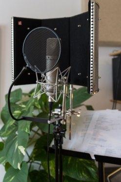 Vocal recording set-up