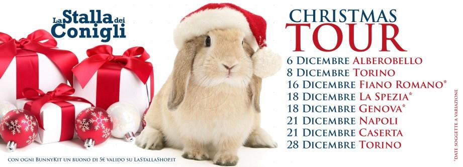 copertinachristmastour