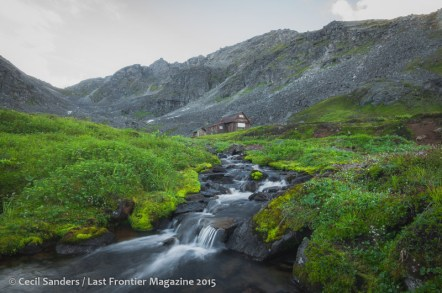 Lush foliage late in the summer surrounds a high elevation stream.