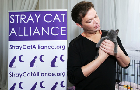 Bennett Righter with Stray Cat Alliance