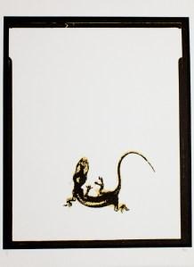 gecko death