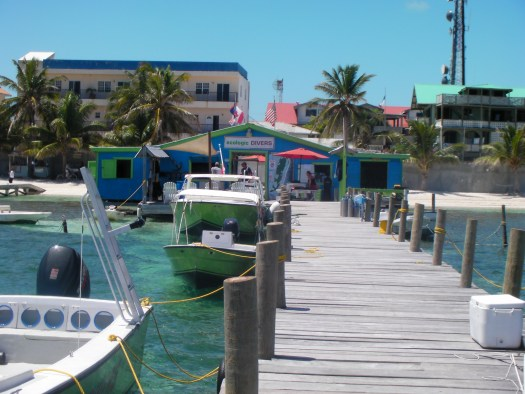 Ecologic Dock