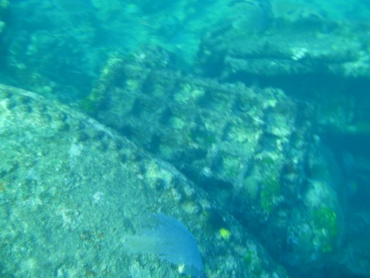 Shipwreck of Hunting Cay in Belize