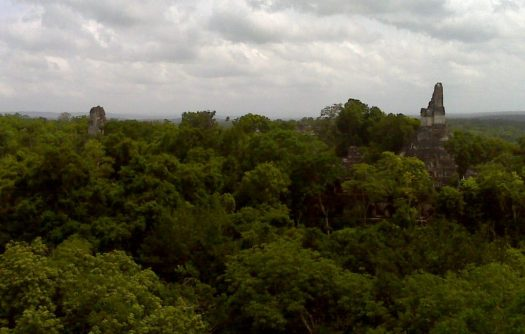 Tikal V view 3