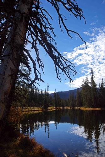 sm_Yellowstone_0351