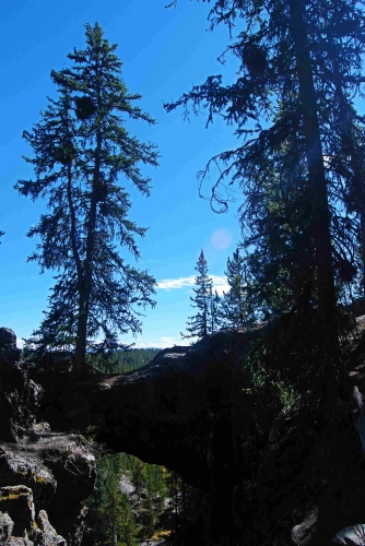 sm_Yellowstone_0360