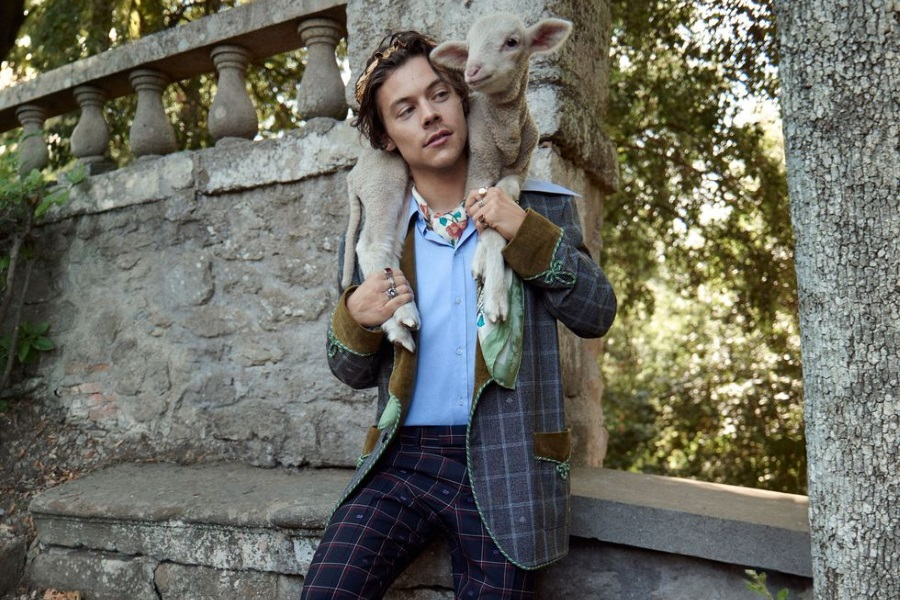 Harry Styles Looking Cute AF Rocking Gucci's Latest Fashion (2020)