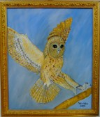 Owl,2003