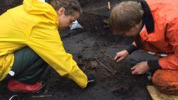 Gli archeologi all'opera nel sito presso Uppsala (Foto: SVT)