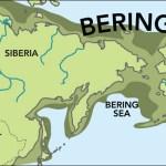 Beringia (Immagine: G. Grullon/Science)