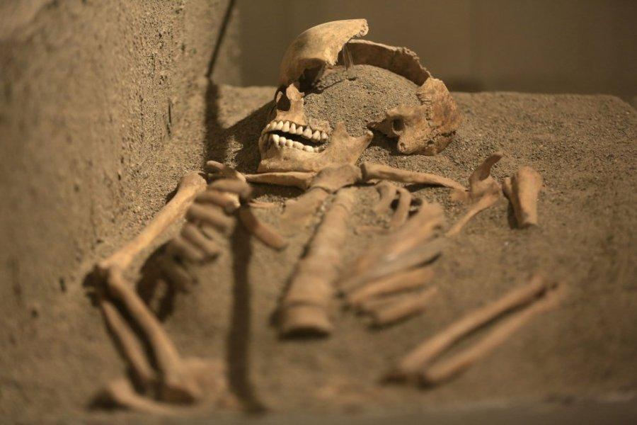 Uno dei corpi rinvenuti durante l'ultima campagna di scavo e datato al IX sec a. C. (Foto: Yara Nardi F3 Press)