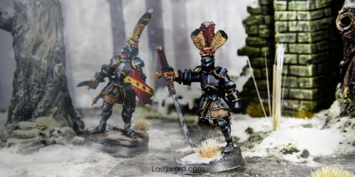 Shop-miniature-Reichguard-foot-knights-03