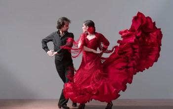 Фламенко. Танец испанских цыган