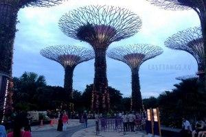 Сады у залива в Сингапуре, Сады у залива в Сингапуре где находятся, Сады у залива в Сингапуре отзывы, Сады у залива в Сингапуре карта, Сады у залива в Сингапуре как доехать
