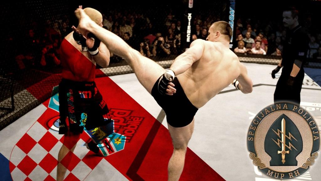 Mirko Cro Cop Filipovic - kick