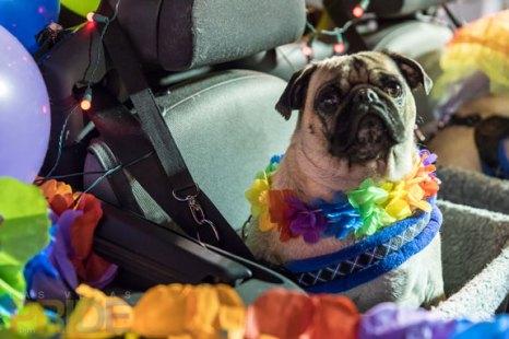 2016-PrideParade_095
