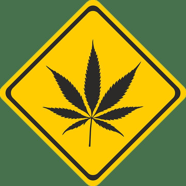 responsible recreational marijuana use in nevada