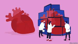 El corazón humano con un Gemelo Digital!!
