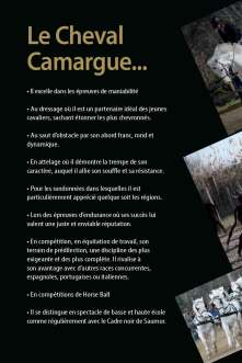 16_pages_camagri_def_sup-4