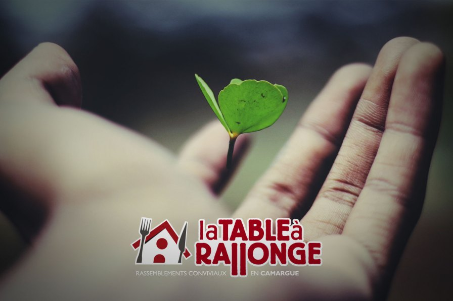 Initiation au voyage chamanique. Les parenthèses inattendues de la Table à Rallonge en Camargue
