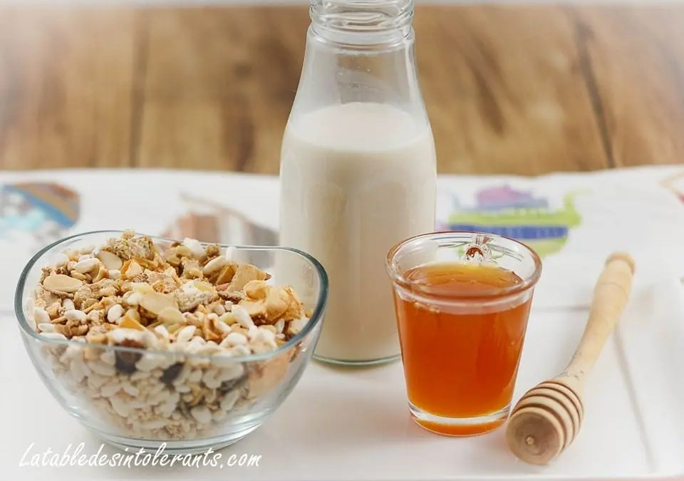 CÉRÉALES GOURMANDES AUX FRUITS SECS ET OLÉAGINEUX sans gluten, sans lait, sans sucre, avec ou sans levure
