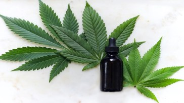 cannabis alivia el dolor