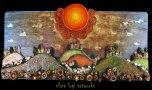 Silvia Logi Artworks - Fiori di campo sotto il sole