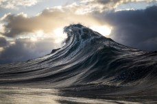 Found At Sea - Ray Collins Photo 10
