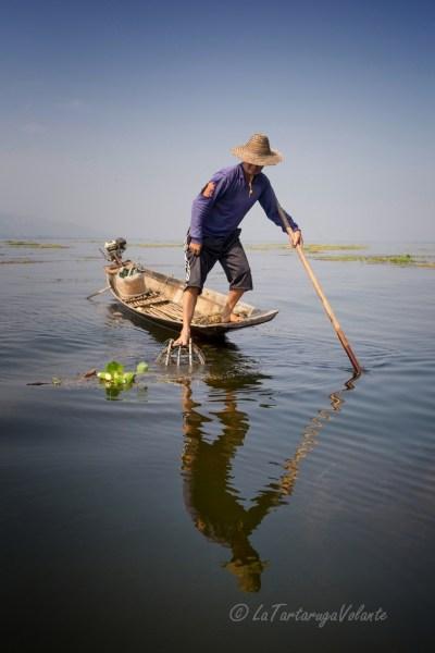 viaggio in Myanmar, Lago Inle pescatore in azione
