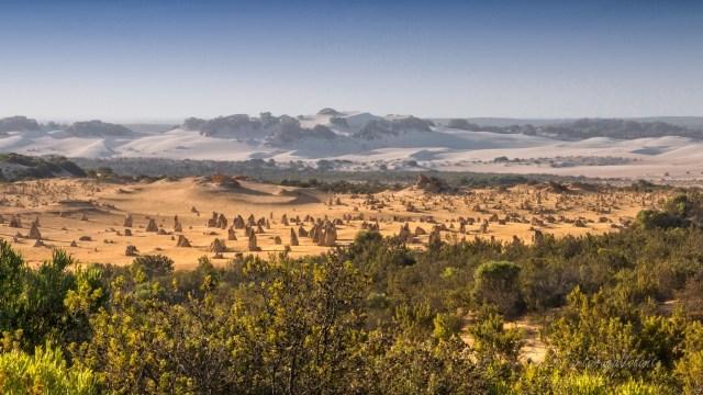 Western Australia Pinnacle Desert landscape