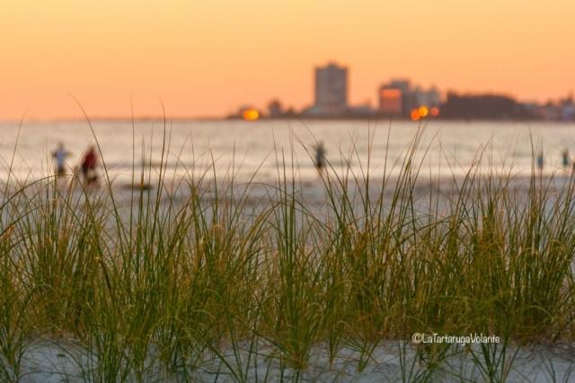 Florida, tramonto a Sanibel