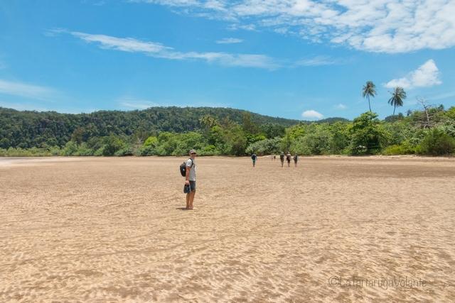 Borneo, Bako NP atmosfera da lost