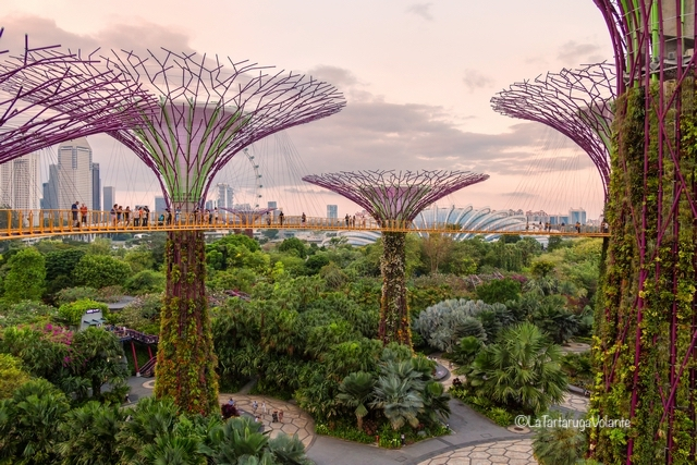 Singapore, Garden by the Bay