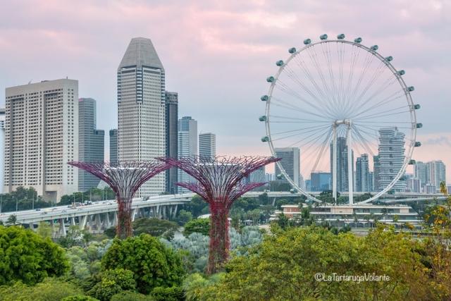 Singapore, Tree e Flyer di giorno