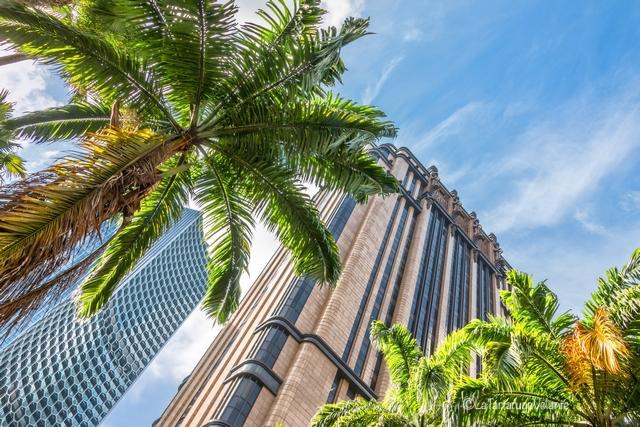 Singapore, la città del verde