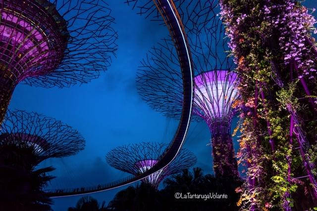 Singapore, particolare del Sky walk