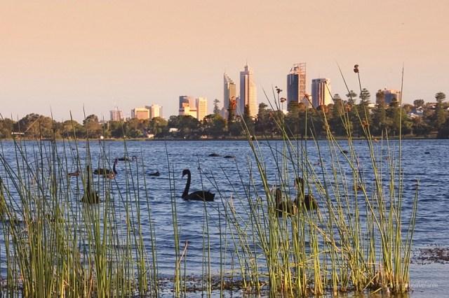 perth, lake monger al tramonto