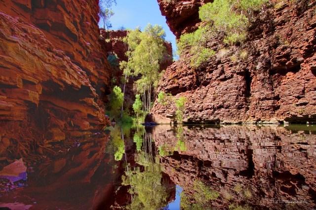 outback australiano, gorge con acqua